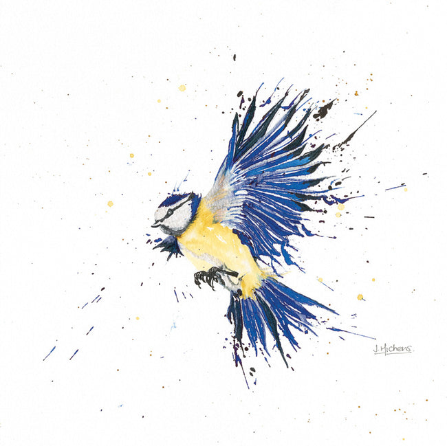 Blue Tit in Flight Greeting Card and Gift by Jackie Hichens