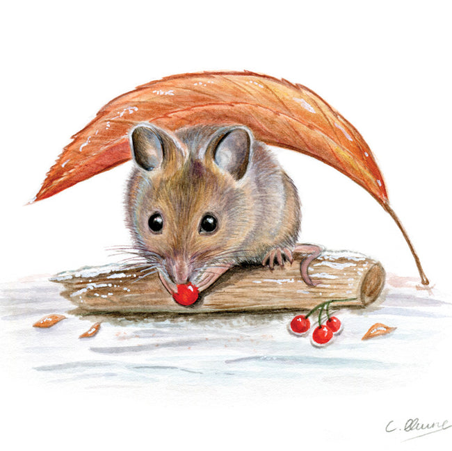 Sheltering beneath a leaf Greeting Card and Gift by Christina Quine