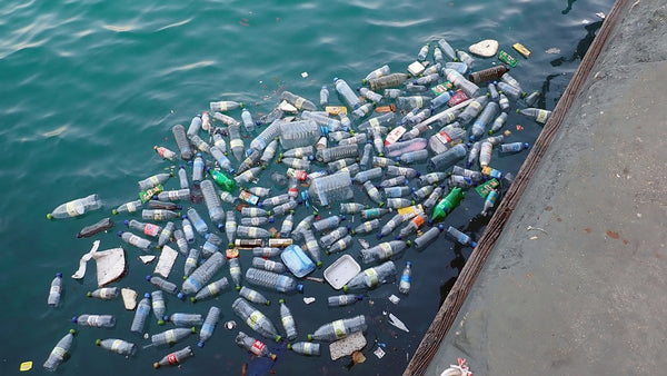 single-use plastic bottle pollution