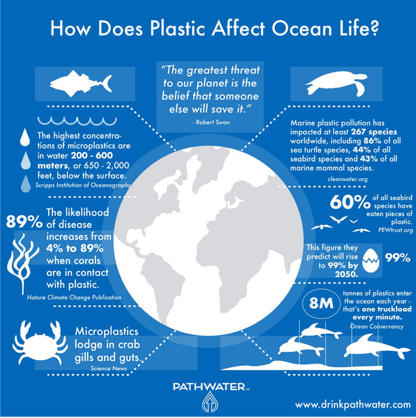 How does plastic affect ocean life? | PATHWATER