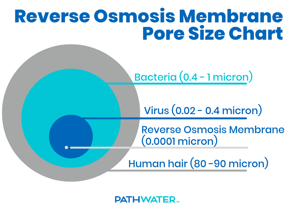 Reverse Osmosis Membrane Pore Size Chart | PATHWATER