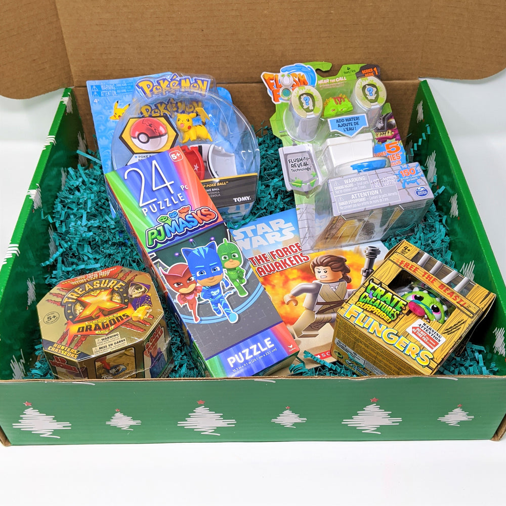 Holiday Toy Box - Limited Quantity