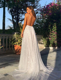 Backless Champagne Evening Dress Long Prom Gown