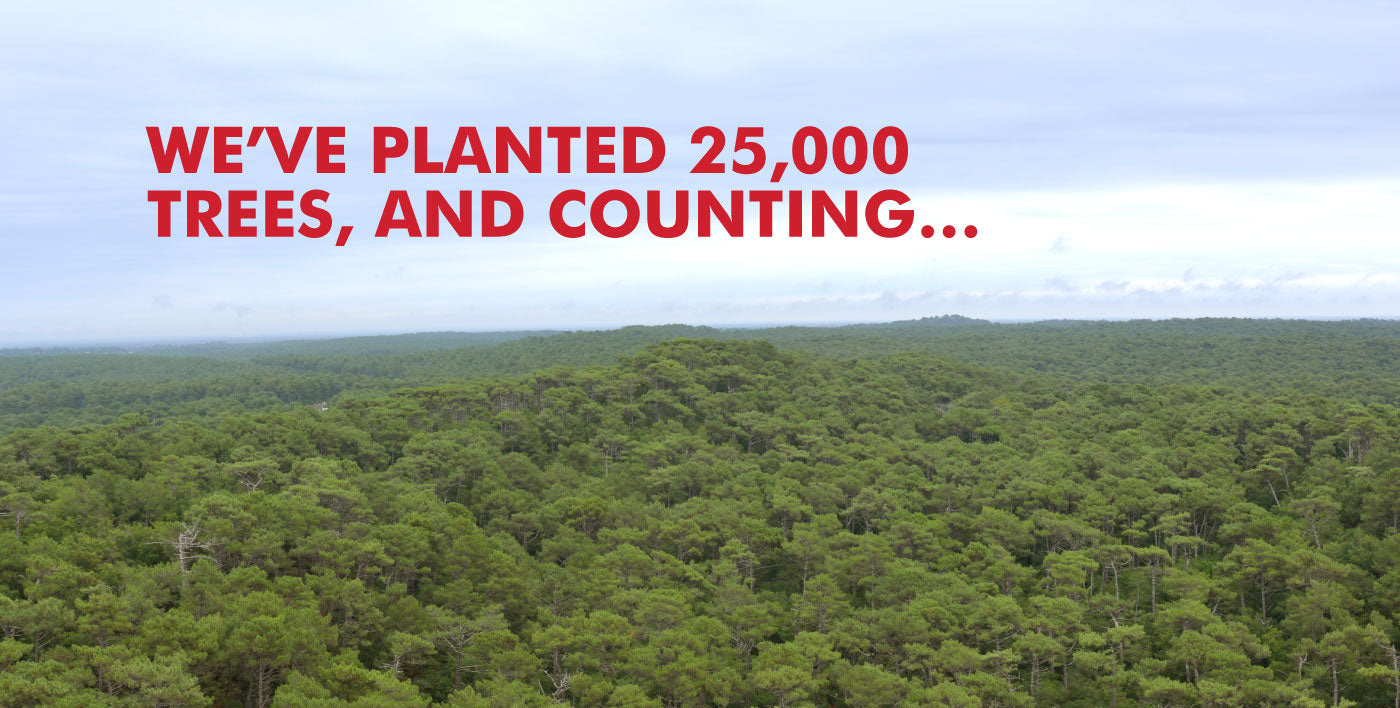 We've planted 25,000 trees