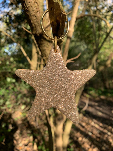 Abi Williams Leather Sparkle Star Keyring- Gold