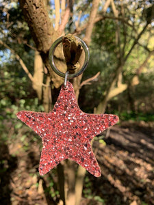 Abi Williams Leather Sparkle Star Keyring- Rose Gold
