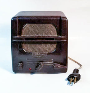 Webster Electric Telehome