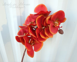 Red orange phalaenopsis orchid - Real touch orchid - DIY Silk Flowers