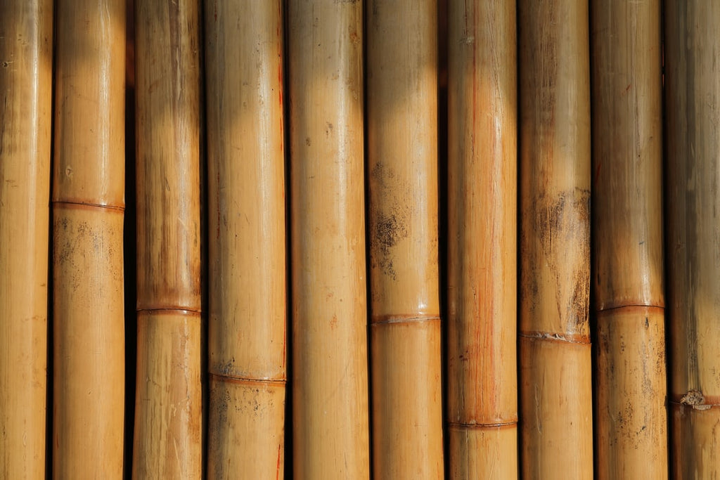 The Benefit Of Switching From Plastic To Bamboo