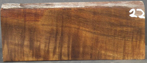 Stablilized Curly Koa Knife scale #22