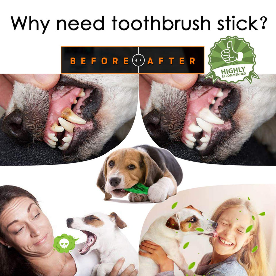 Doggie Teeth Cleaner