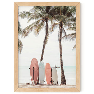 Sun n' Surfboards