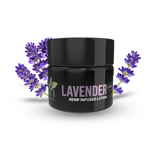 LAVENDAR CBD LOTION BY GRN CBD