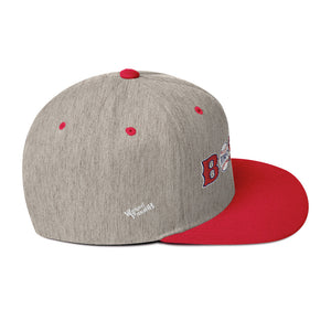 Unisex Boston w/Baseballs Snapback Hat