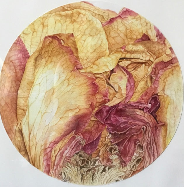 Pressed Rose: Inner World