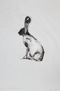 """Large bunny facing West"""