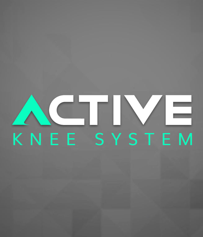 Active Knee System