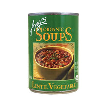 Load image into Gallery viewer, Lentil Vegetable Soup