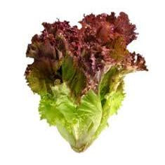 Red Leaf Lettuce, Organic