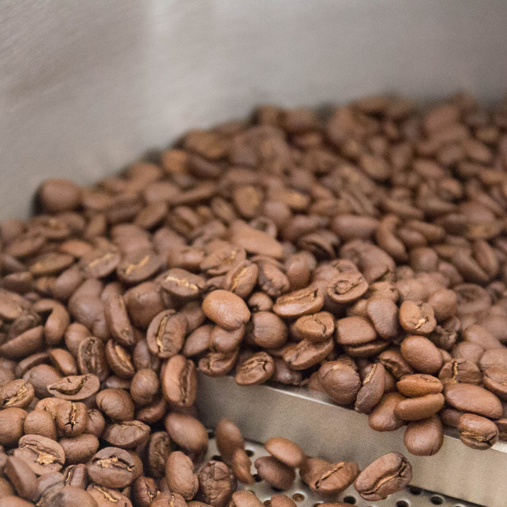 Coffee Basics | What's Your Ideal Roast?