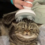Intelligent Pet Massager
