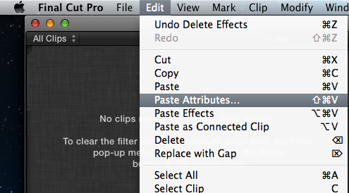 Copy/paste effects & settings from one clip to another