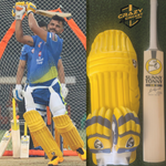 SG SR 3 - Suresh Raina English Willow Bat