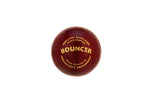 SG Cricket Ball - Bouncer