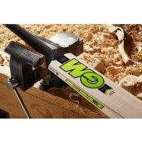 GM Zelos II DXM 808 English Willow Cricket Bat