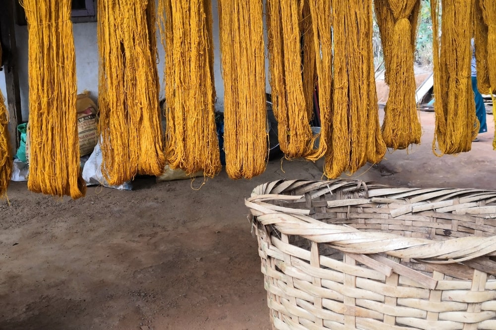 turmeric natural color dye  for eri silk yarn