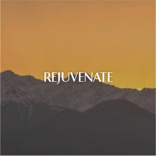 Rejuvenate | At Candles By LND, we work daily to create products that keep our planet, our people and environment happy.