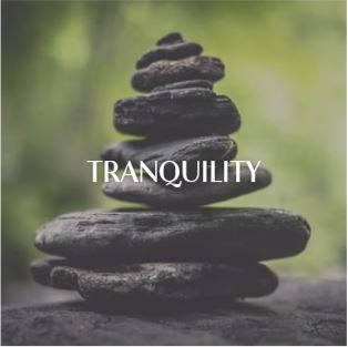 Tranquility | At Candles By LND, we work daily to create products that keep our planet, our people and environment happy.