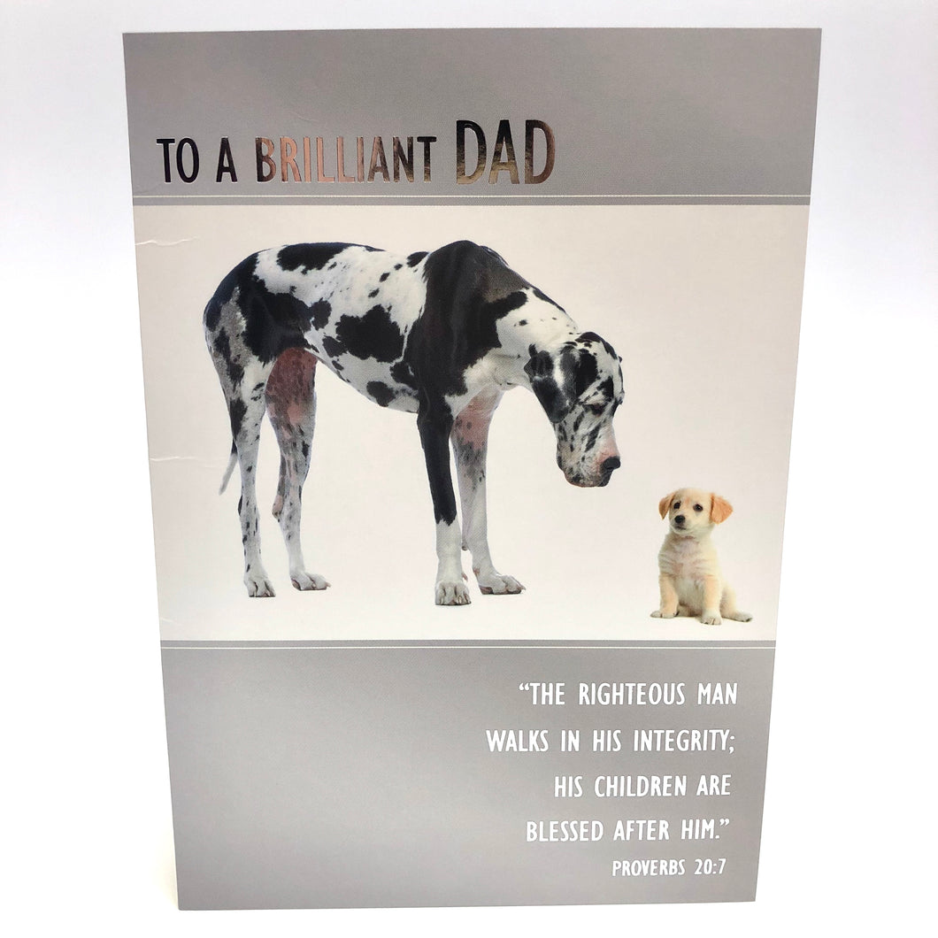 Brilliant Dad Birthday Card