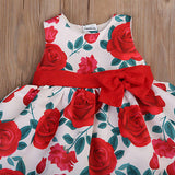 Bed Of Roses Bow Knot Dress - Dresses - baby-petite