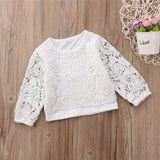 Sweet White Lace Sweater Blouse Top