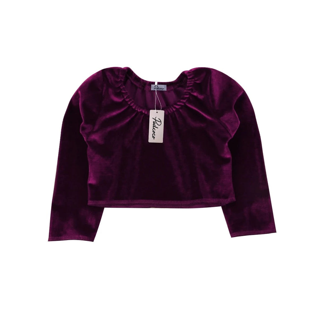 Luxurious Chic Velvet Long Sleeve Top
