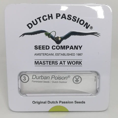 Dutch Passion - Durban Poison Feminised Photoperiod (3 pack)