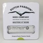 Dutch Passion - Critical Orange Punch Feminised Seeds (3 pack)