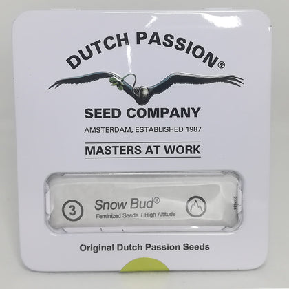 Dutch Passion - Snow Bud Feminised Seeds (3 pack)