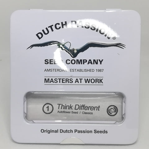 Dutch Passion - Think Different Autoflowering (1 seed)