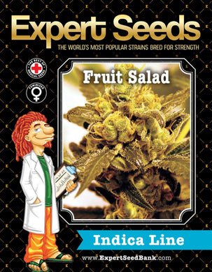 Expert Seeds - Fruit Salad Fem (3 pack)