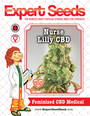 Expert Seeds - Nurse Lilly CBD (3 pack) - Medical Marijuana