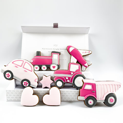 Posh Pink Toys Biscuits luxe A4 magnetic box