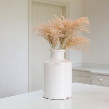 Preserved Fluffy Reed Grass Bunch