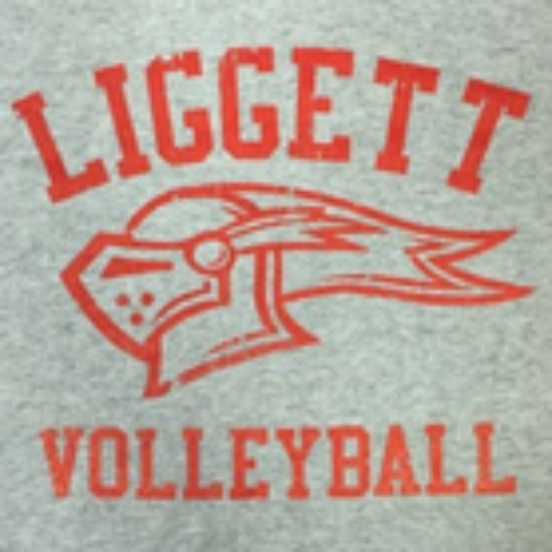Adult Volleyball SS Tee