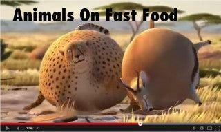 WHAT IF ANIMALS ATE FAST FOOD