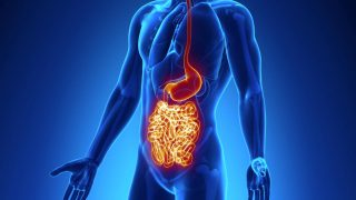 RESEARCHERS TRACKING CAUSE OF CROHN'S