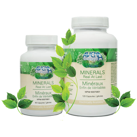 MINERALS - PLANT BASED
