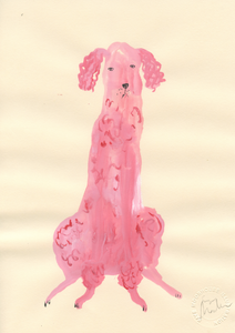 A Small Pink Poodle