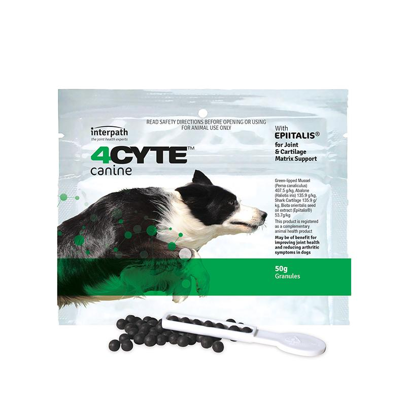 Interpath 4cyte Canine Joint Support Supplement - 50g | Choice Vet Pharmacy
